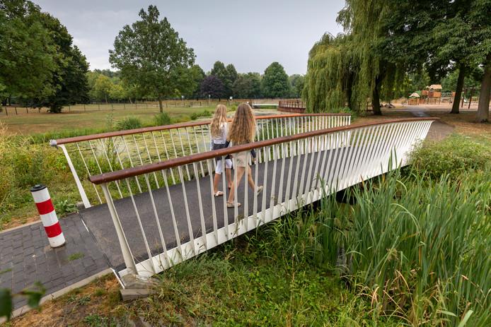 Een van de nieuwe bruggetjes in het van Zwietenpark op de Maaspoort.
