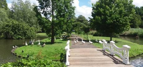 Honden uitlaten in stadspark Kampen afgeraden vanwege botulisme