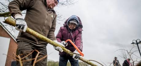 Dagbesteding bij Erve Peeze: stuk fitter door klussen in de natuur