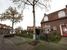 Doesburger krijgt na kap een gratis boom: 'Maar waarom kappen?'