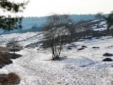 Al meer dan 525 inschrijvingen voor eerste kerstwandeling op Posbank