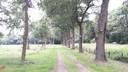Het fietspad langs de Karrevenseweg in Heijen moet straks via dit bos naar de tunnel onder de A77 leiden.