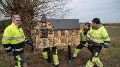 Bijen krijgen gemeentehuis