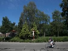 'Kruisbeeld Vlokhovenseweg in Woensel kan weer generatie mee'