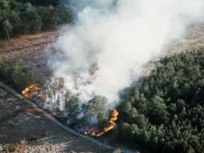 Gemeente Epe kan voortaan rookverbod uitvaardigen in bossen en natuurgebieden