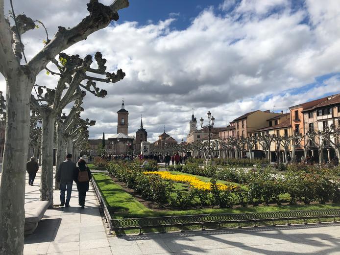 Foto 1: Alcala de Henares, Spanje