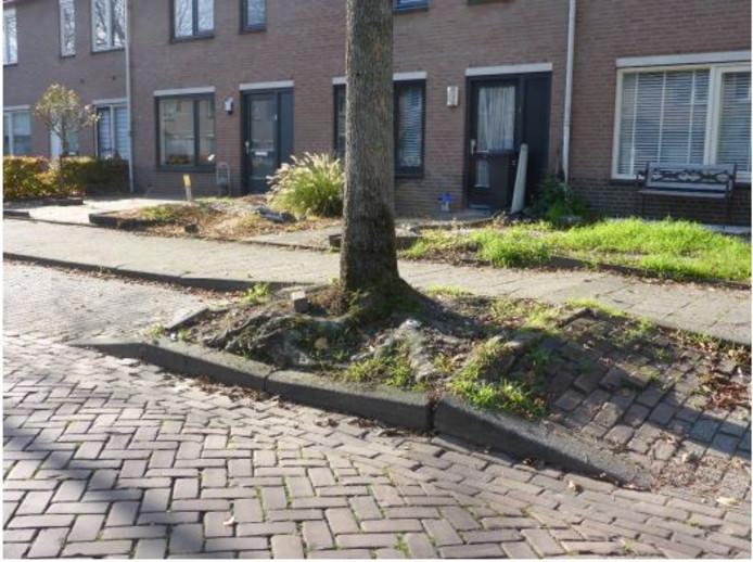 Een van de locaties in de gemeente Gilze en Rijen waar sprake is van wortelopdruk.