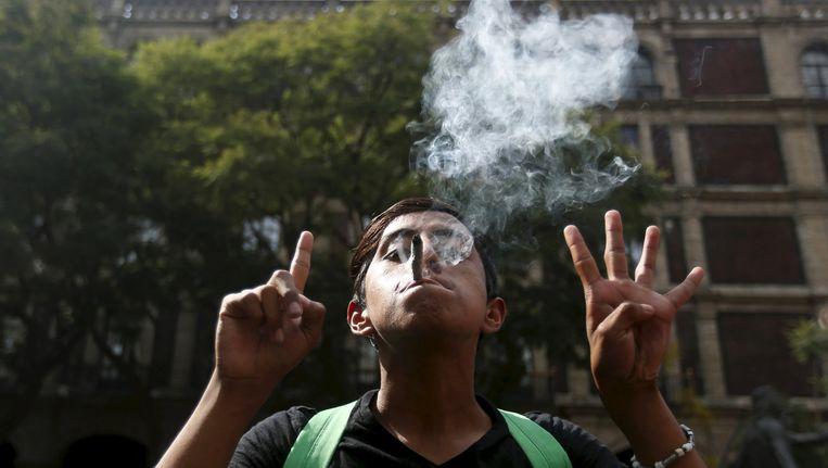 Een sympathisant van Smart rookt buiten bij het Hooggerechtshof van Mexico een joint. Beeld Reuters