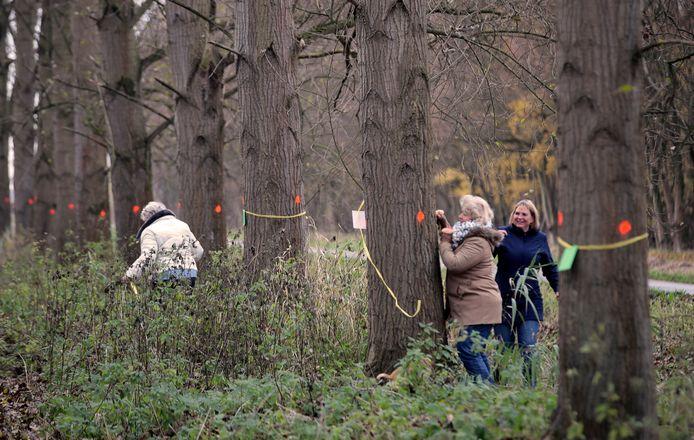 In Spijkenisse protesteerden bewoners tegen de kap van bomen in het Mallebos.