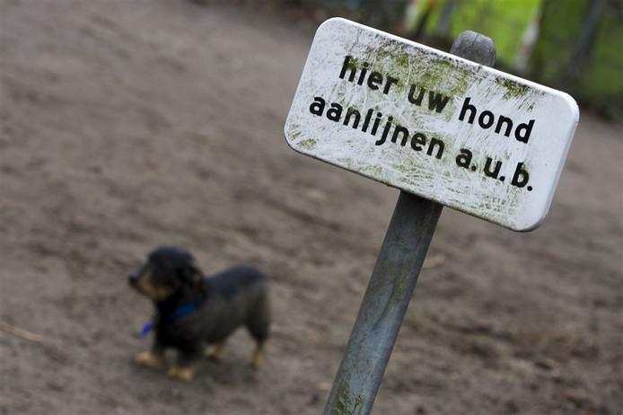 Aanlijngebod voor honden.