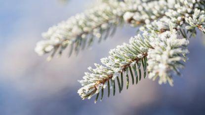 Koud winterweer met zonnige periodes, 's nachts temperaturen tot min zes graden