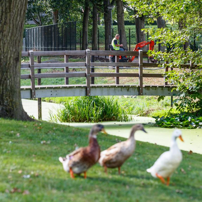 Het dierenparkje naast Sovak DAC op de hoek van de Niervaartweg in Klundert.