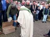 Jachthonden én postduiven krijgen zegen van de pastor in Rekken