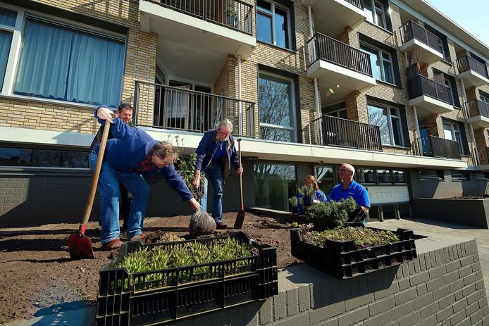 Flat aan de Van Bleiswijkstraat is gerenoveerd. Bewoners Jan van der Hel(l) en Koos Wijsman(r) planten samen een boompje