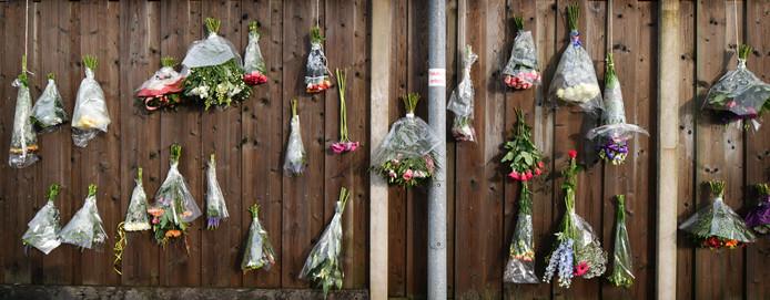 Bloemen voor de doodgeschoten honden.