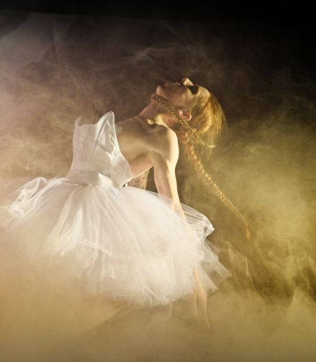 Opblaaszwanen en sexy dans: drie dagen coronaproof avontuur in Parktheater Eindhoven