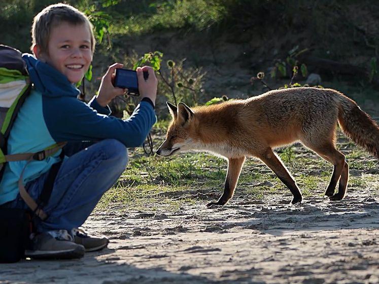 Hoe bijzonder, deze vos komt wel heel dichtbij Thijs (10)