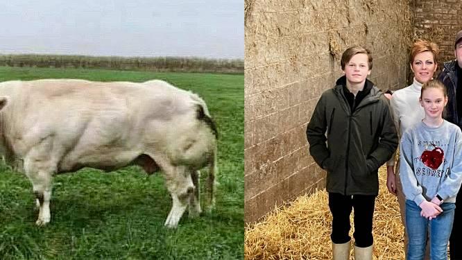 """Prinses van de boerderij is niet meer: """"Gabane was een specialleke"""""""