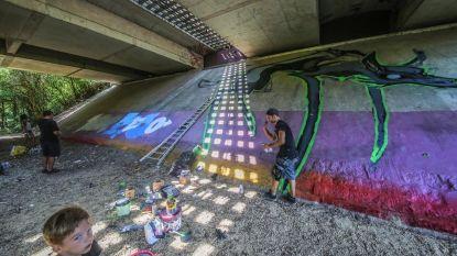 Graffitikunstwerken sieren Leiebrug