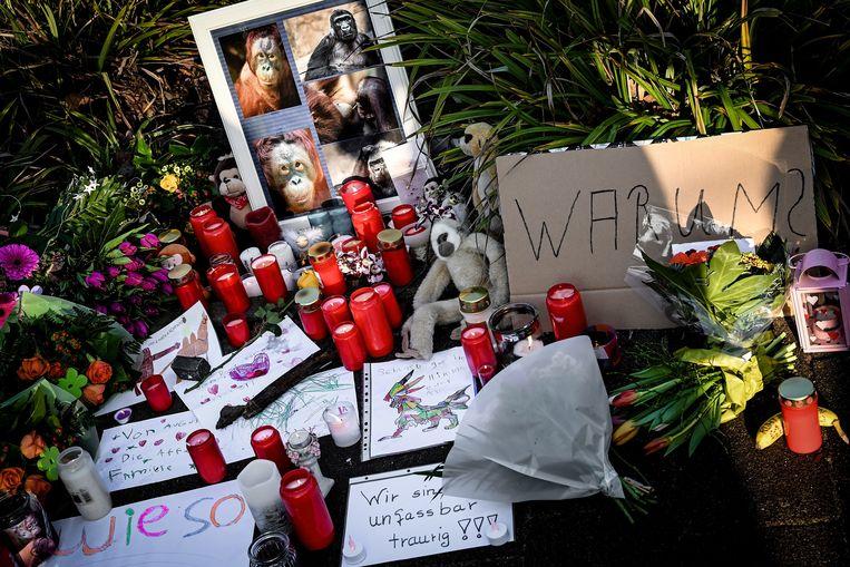 Kaarsjes en bloemen om de gestorven dieren te herdenken.