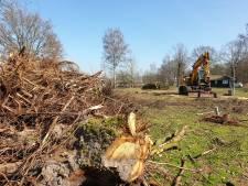 Tientallen bomen gekapt voor uitbreiding park De Tolplas in Hoge Hexel