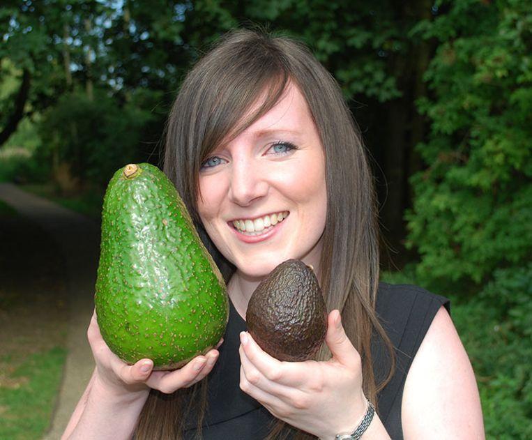 Links een avozilla, rechts een 'gewone' avocado.
