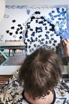Iedereen kan nu 'Gezicht van Nijmegen' bouwen; 'heel wat sneller dan de kunstenaar zelf'