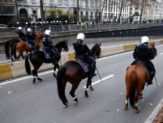 Jouw paard straks aan de slag bij federale politie?