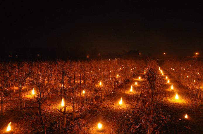 De vuurpotten bij de fruitkweker in Fijnaart.
