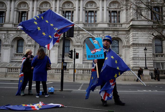 Tegenstanders van de Brexit blijven demonstreren in de hoop dat het Britse plan om het lidmaatschap van de EU te beëindigen van tafel gaat.