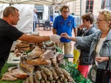Internationale markt Steenwijk moet nog groeien: publiek blijft weg
