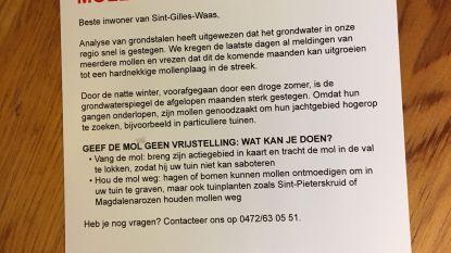 Sint-Gillis-Waas in de ban van flyer over 'mollenplaag'