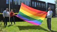 Assenede laat regenboogvlag wapperen als steun voor holebi's