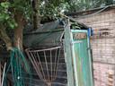 Alleen het 'perenest', een kast die rondom een perenboom is gebouwd, mag van de gemeente blijven staan.