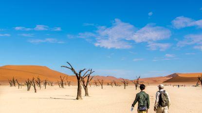 Het wonder van de woestijn