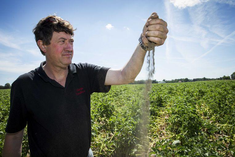 Akkerbouwer Bert Sloetjes bekijkt zijn droge akker met aardappelen in het buitengebied van het Achterhoekse Halle. De droogte neemt met name in het oosten en zuiden van het land toe.