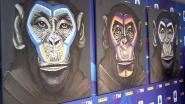 Tekenaar van apencampagne tegen racisme in Serie A biedt verontschuldigingen aan
