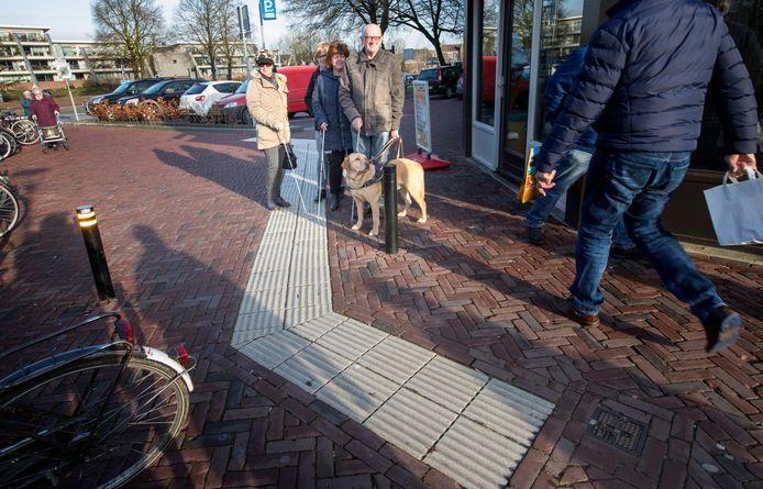 Vier bestuursleden van de stichting Zichtbaar! in Veldhoven.