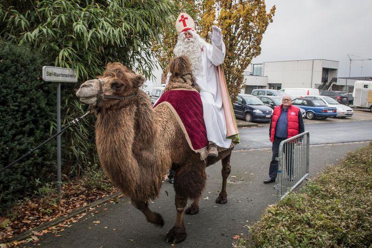 Vorig jaar trok Sint-Maarten op een kameel door Ardooie.