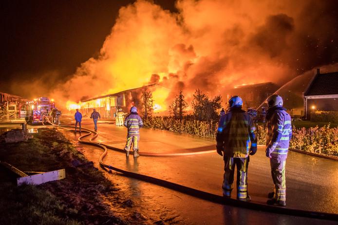 Op 11 november 2018 brak voor de derde keer brand uit op de boerderij van boer Gert in Werkhoven. De 32 koeien in de stal kwamen om het leven.
