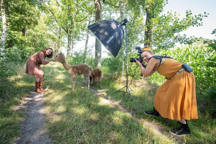 Iederen wil op de foto met een alpaca