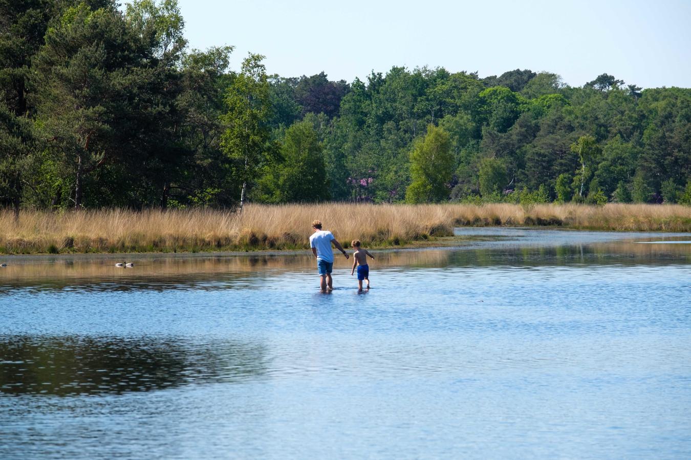 Wandelaars genieten van de natuur en de zon op de Kalmthoutse Heide.