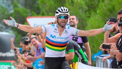Valverde heeft z'n ritzege beet in de Vuelta na spektakelstuk bergop, Teuns verliest leiderstrui