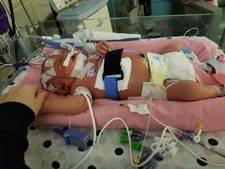 Baby overlijdt aan gevolgen virus na kus