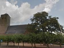 103 bomen in hartje Didam gekapt: grote acacia maakt plaats voor rode beuk
