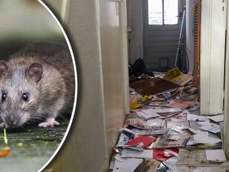 Utrechtse wijkagent ontdekt: leegstaand monumentaal pand 'half opgegeten door ratten'