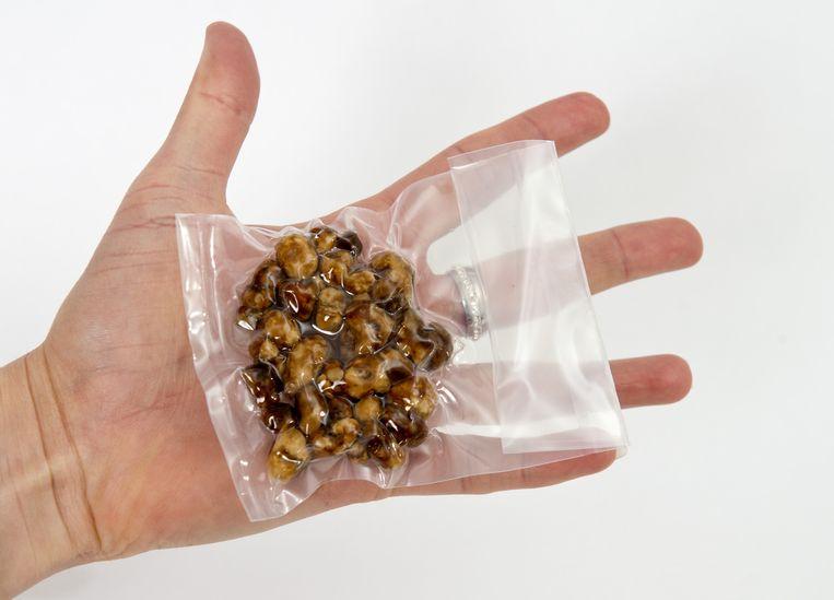 Paddo's zijn in 2013 door een derde van het uitgaande publiek (clubbers en ravers) weleens gebruikt. 10 gram truffels kosten euro 10 tot euro 15. Beeld anp