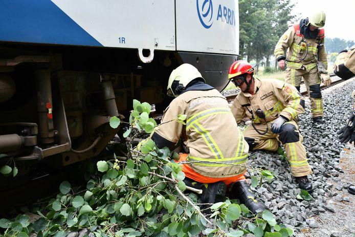 De brandweer moest de resten van de boom onder de trein verwijderen.