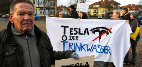 Duitse rechter verbiedt kap bomen voor bouw eerste Europese Tesla-fabriek