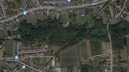 Ontdek Mijlbeekbos samen met Natuurpunt